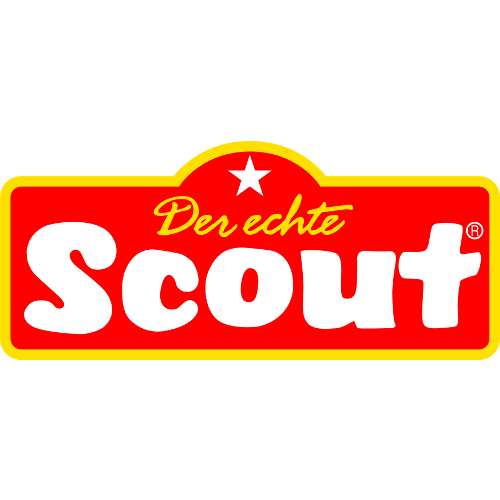 Icon-Scout