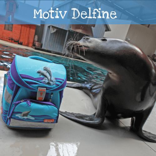 Delfin mit Robbe
