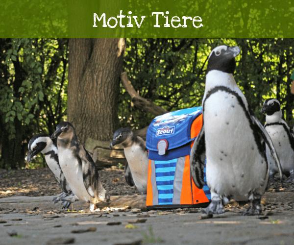 Tiere mit Pinguinen