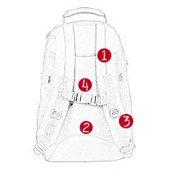 Der Rucksack Eastpak Tutor in der Rückansicht